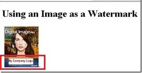 שימוש בתמונה כסימן מים