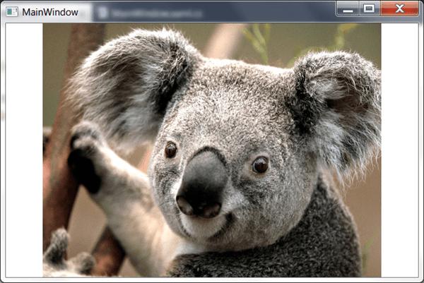 מדריך WPF – הצגת תמונה וקטע וידאו