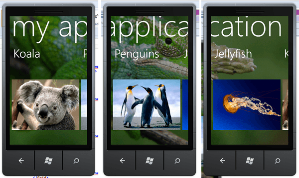 מדריך Windows Phone – שימוש בדפים מיוחדים