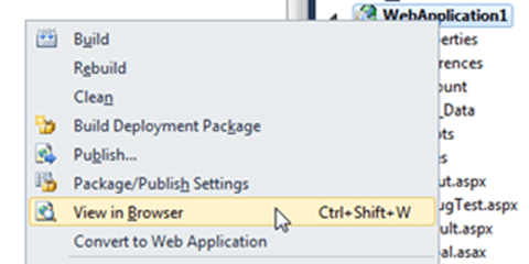 Visual Studio Express - View in Browser